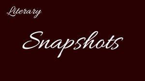 snapshots-button